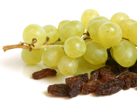 Dogs should not be fed grapes, raisins, currants or sultanas