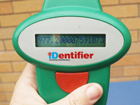 When a microchipped pet is scanned with a handheld scanner, the microchip number is shown on the screen
