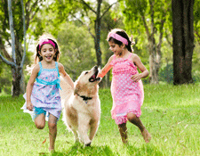 Having a pet can enhance emotional development in children and help in encouraging an active lifestyle
