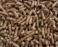 Good quality concentrate pellets can be added to your rabbit's diet